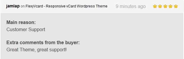 FlexyVcard - Responsive vCard WordPress Theme